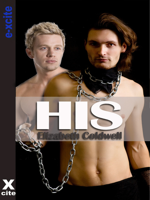 His (eBook): Gay erotic fiction